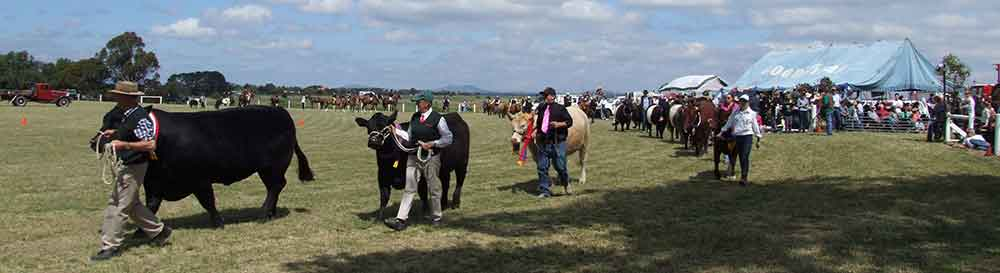 Clunes Agricultural Show